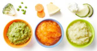 Tekstur makanan bayi 8 bulan bacatimes.com terbaru 2021